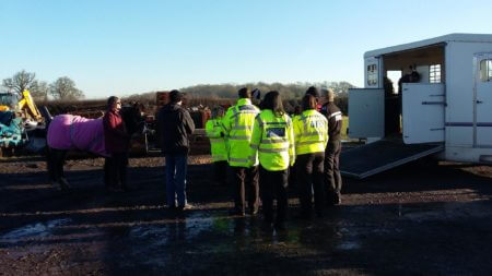 Officers are shown how to deal safely with large animals such as horses.
