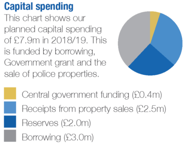 Pie chart showing capital spending 2018/19
