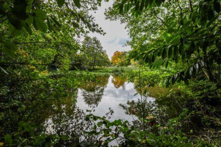 Nature lake
