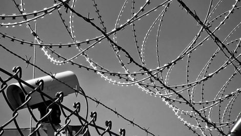Crime in prisons: where now and where next?